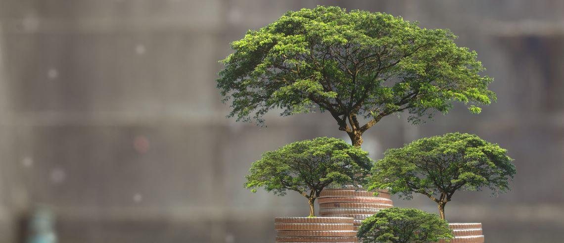 Hur EU:s gemensamma riktlinjer för hållbara investeringar påverkar dig som investerare